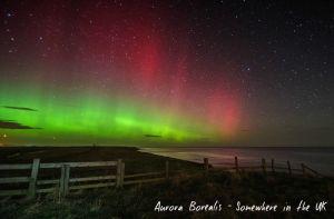 AuroraBorelis.jpg